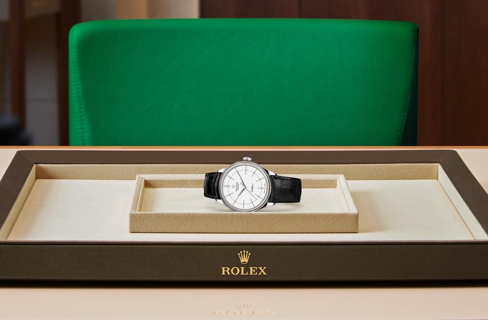 Rolex Cellini Time M50509-0016 Tray